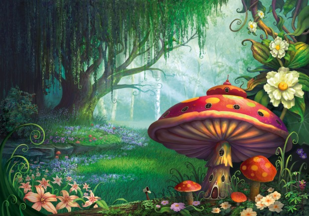 shroom forest