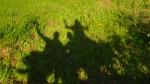 Shadow waving