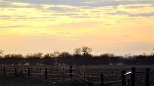 Platte River Field