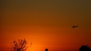 plane orange sunset