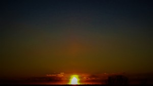 phallic sun