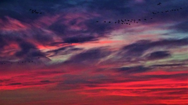 Great Plains Sky