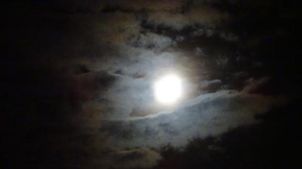 Halo Moon