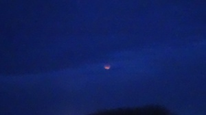 A drip of the blood moon