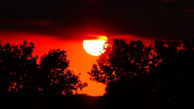 Summer Solstice Sandhills >> Nebraska Uncle Tree S House