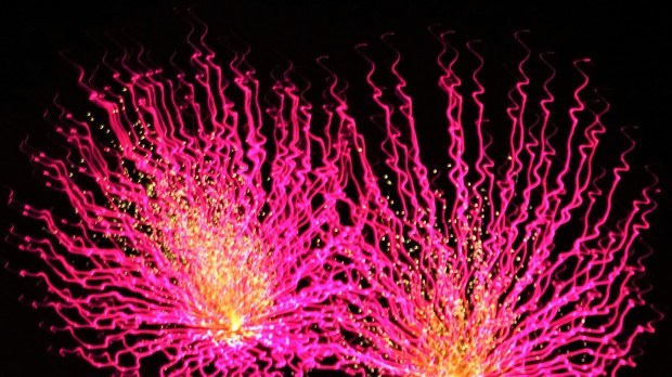 Hot pink fireworks