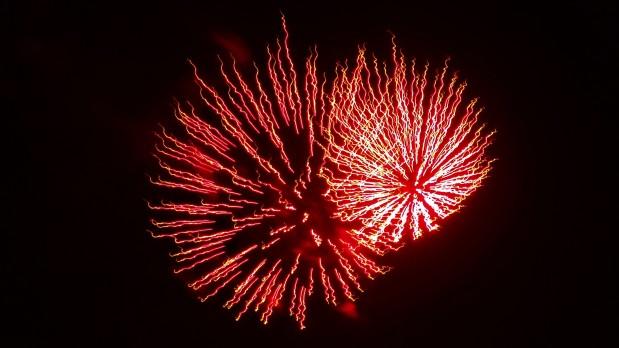 Rosie Fireworks
