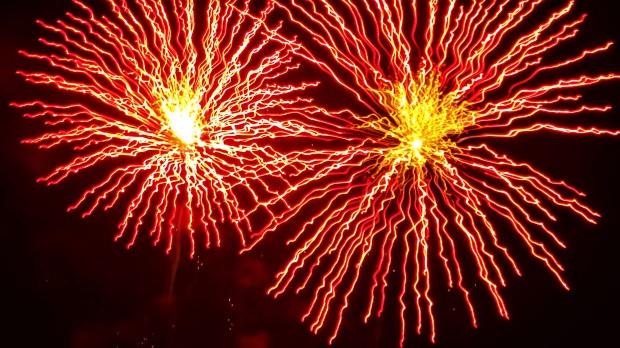 Daisy fireworks